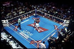 8 Jun 2002:    General action during the Lennox Lewis vs Mike Tyson heavyweight title fight at the Pryamid Arena in Memphis, Tennessee. Lewis won by knocking out Tyson in the eight round and remained the IBF and WBC champion. ..Mandatory Credit:  John Iacono/SI/Icon SMI