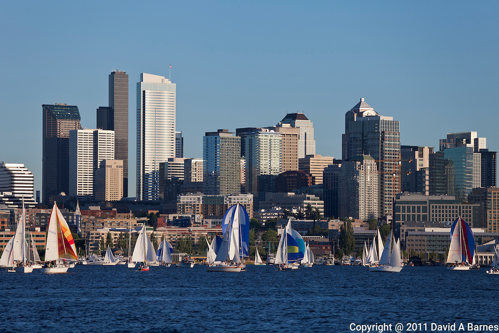 Duck dodge, a sailboat race on Lake Union, Seattle, Washington, USA