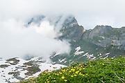 Grosser Sättelistock im Nebel
