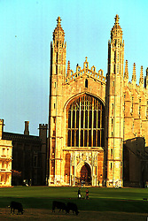 Cambridge University Buildings, November 12, 1999. Photo by Andrew Parsons / i-images..