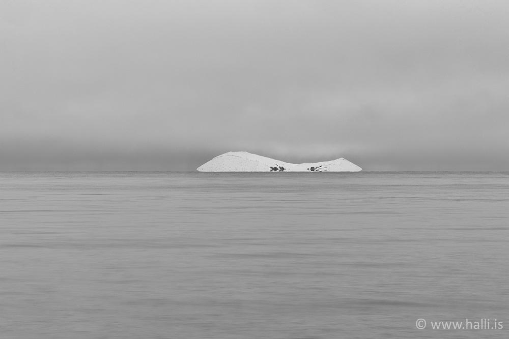 The island Sandey in Thingvallavatn, Iceland - Sandey í Þingvallavatni