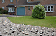 Pebble and concrete landscaping with shrub outside detached houses in Rosedale Av, Stonehouse, Gloucestershire