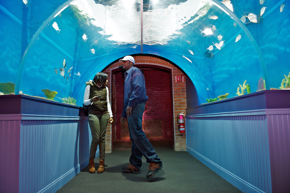 Patrons enjoy a tour through the Cleveland Aquarium on Monday, Feb. 6, 2012