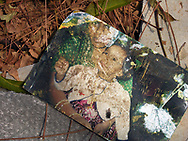 A photo of a mother and child amongst the debris of the Senthalir Orphanage in the northern Tamil Vanni district. Many of the 120 children in the orphanage had mothers who were war widows from Sri Lanka's long civil conflict . The mother's had left their children at the orphanage while they received job training in another town. 84 children and 4 staff were killed when the Tsunami struck the coast of Sri Lanka. Mullaitivu, Sri Lanka. 15/01/2005. Photo © J.B. Russell