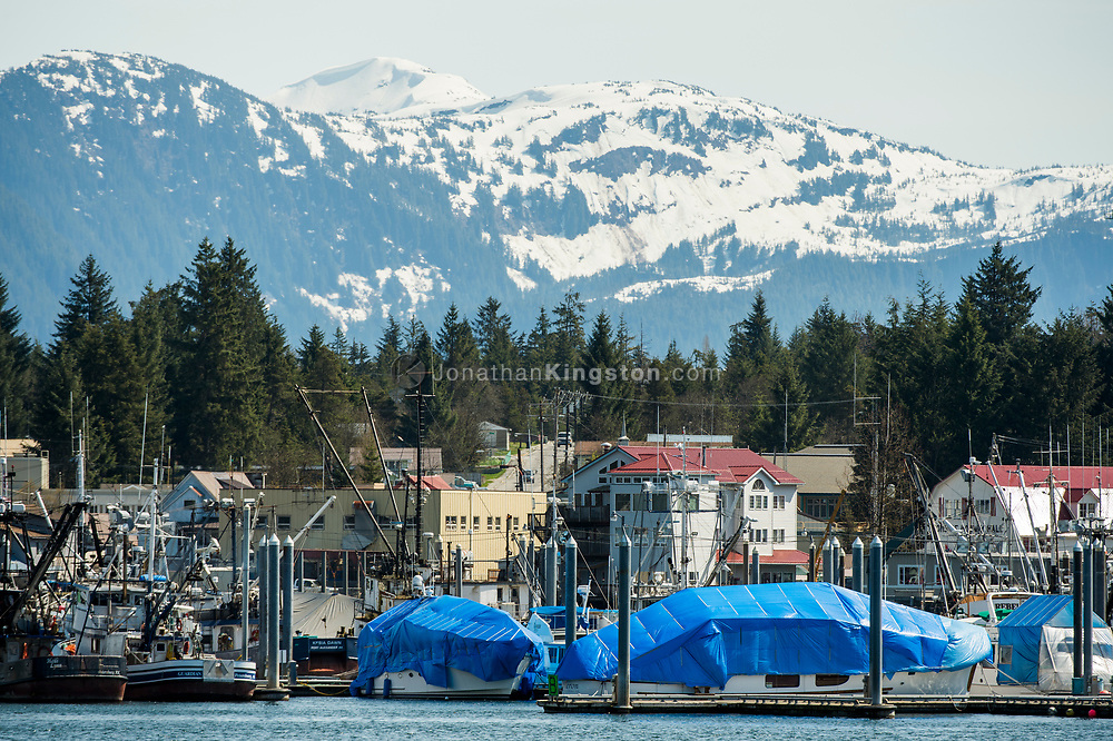View of Petersburg, Alaska from the water.
