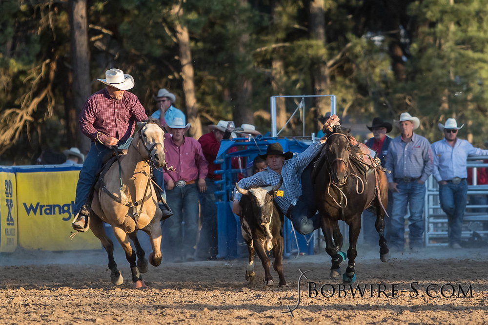 Steer wrestler Brady Thurston makes his run during the second performance of the Elizabeth Stampede on Saturday, June 2, 2018.