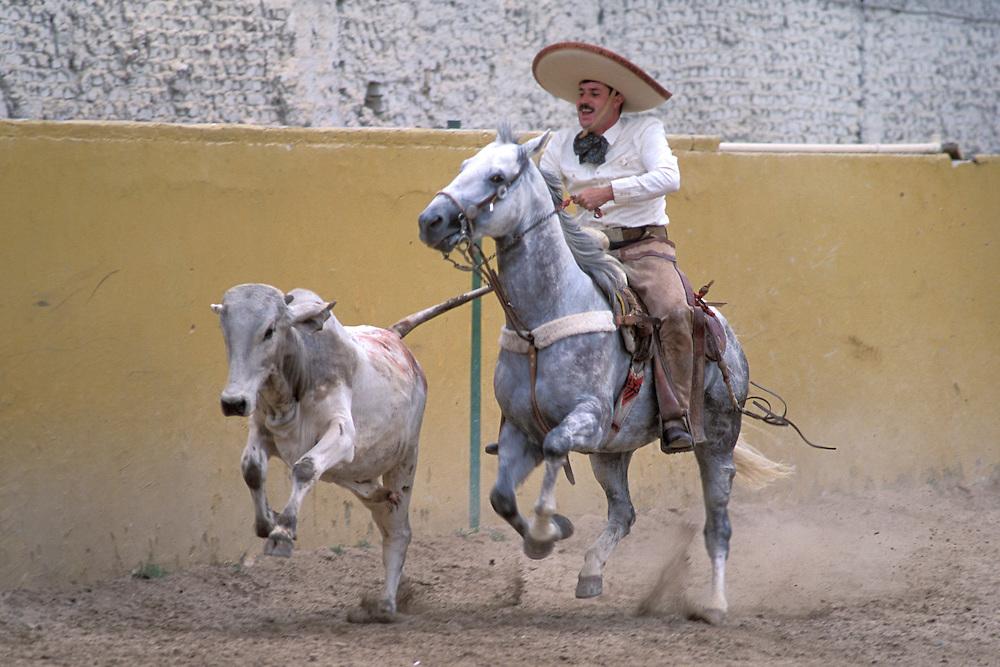 Charros,Charreada, Guadalajara, Jalisco, Mexico
