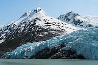 Portage Glacier and Portage Lake; Chugach National Forest, Alaska