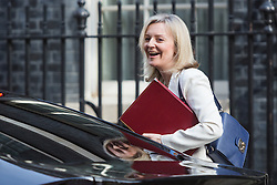 © Licensed to London News Pictures. 12/04/2016. London, UK. LIZ TRUSS arrives for a cabinet meeting at 10 Downing Street. Photo credit : Vickie Flores/LNP