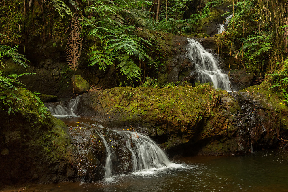 Onomea Falls; Hawaii Tropical Botanical Garden, Pāpa'ikou