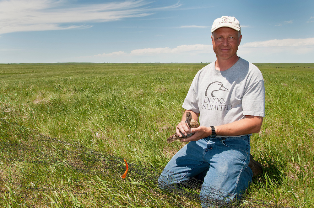 Ducks Unlimited biologists at work, Goebel Ranch, McPherson County, South Dakota