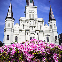 Picture of St. Louis Cathedral and flowers in New Orleans. The Cathedral-Basilica of St. Louis King of France is located in Jackson Square in the French Quarter and was completed in 1794.