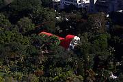 Belo Horizonte_MG, Brasil.<br /> <br /> Parque Municipal Americo Renne Giannetti no centro de Belo Horizonte, Minas Gerais. Na foto Teatro Francisco Nunes.<br /> <br /> The Americo Renne Giannetti Municipal Park in Belo Horizonte, Minas Gerais. In this photo Francisco Nunes theatre. <br /> <br /> Foto: MARCUS DESIMONI / NITRO