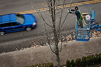 JEROME A. POLLOS/Press..Steve Malone attaches a strand of decorative lights to a tree Monday above Front Street in downtown Coeur d'Alene in preparation for the 23rd annual Holiday Lights Show which is held the day after Thanksgiving.
