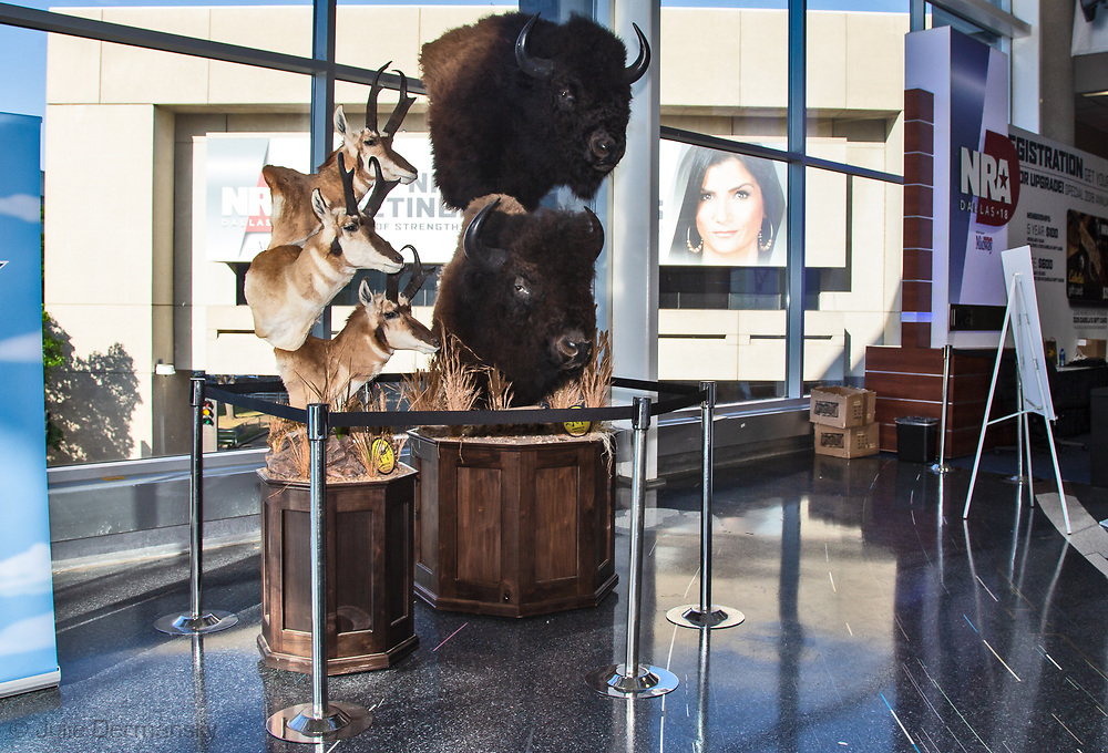 Taxidermy display at the the NRA Annual Meeting & Exhibits at the Kay Bailey Hutchison Convention Center on May 5, 2018 in Dallas, Texas  a booth for women and girls that teaches shooting.