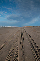 Tire Tracks on Beach at Loomis Lake State Park, Long Beach, Washington, US