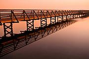 Bolsa Chica Wetlands Bridge