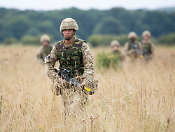 THETFORD - UK - 09- SEPT - 2013: Reservist soldiers from the London Regiment during battlefield training in Norfolk. The exercise by London's only Territorial Army Infantry Regiment was at the STANTA Training Area and watched by Prince Edward ( Not pictured), their Royal Colonel.  The reservists were training for fighting in built up areas , particularly entry to buildings.<br /> Photo by Ian Jones