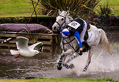 Whangarei-Equestrian, NZ Pony Club Championships