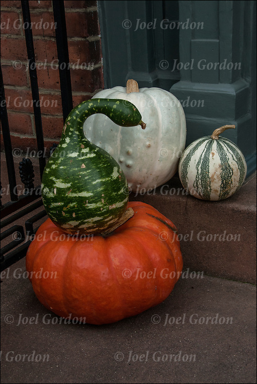 Halloween pumpkins and colorful Cucurbitas (Latin for gourds) decorations in Greenwich Village, New York City<br />