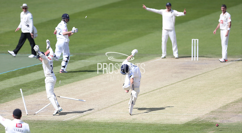 Gareth Berg is run out on 98 by a direct hit from Matt Hobden during the LV County Championship Div 1 match between Sussex County Cricket Club and Hampshire County Cricket Club at the BrightonandHoveJobs.com County Ground, Hove, United Kingdom on 8 June 2015.
