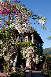 """""""Botanical Gardens in Puerto Vallarta"""" - These flowers and building were photographed at the botanical gardens in Puerto Vallarta, Mexico."""