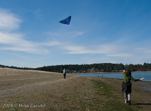 Kite flying on Hartstine Island, near Shelton, WA.