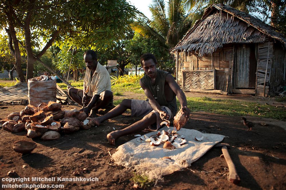 Ni Vanuatu men cleaning out coconuts to make them into copra. Uleveo, Maskelyne Island, Malampa Province, Malekula, Vanuatu
