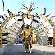 D.C. Carnival 2010 - Mas 6/20/10