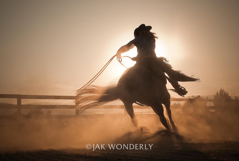 Horse trainer working a cutting and reining thoroughbred horse at dusk. Petaluma, California, USA.