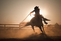 Horse trainer working a cutting and reining thoroughbred horse at dusk. Petaluma, California, USA.