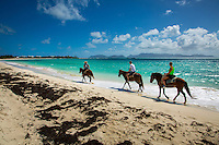 Rendezvous Bay, Anguilla - January 07, 2015: Visitors ride horses along the tranquil shores of Rendezvous Bay courtesy of Seaside Stables. For those who are looking for more adventure, Seaside Stables allows riders to take the horses into the water for a fee. CREDIT: Chris Carmichael for The New York Times