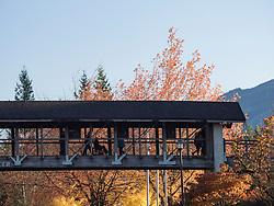 United States, Washington, pedestrian bridge to Salish Lodge and Snooqualmie Falls