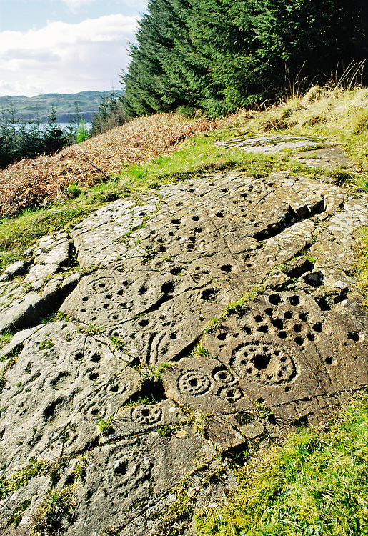Rock art. Excellent example of prehistoric cup and ring marks on outcrop at Ormaig near Kilmartin, Argyll, Scotland, UK