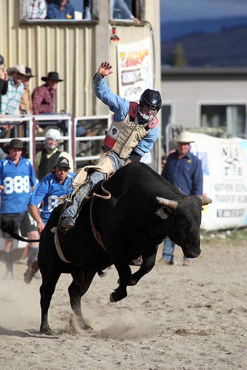 Te Anau rodeo, Southland, NEW ZEALAND. 30/12/2010
