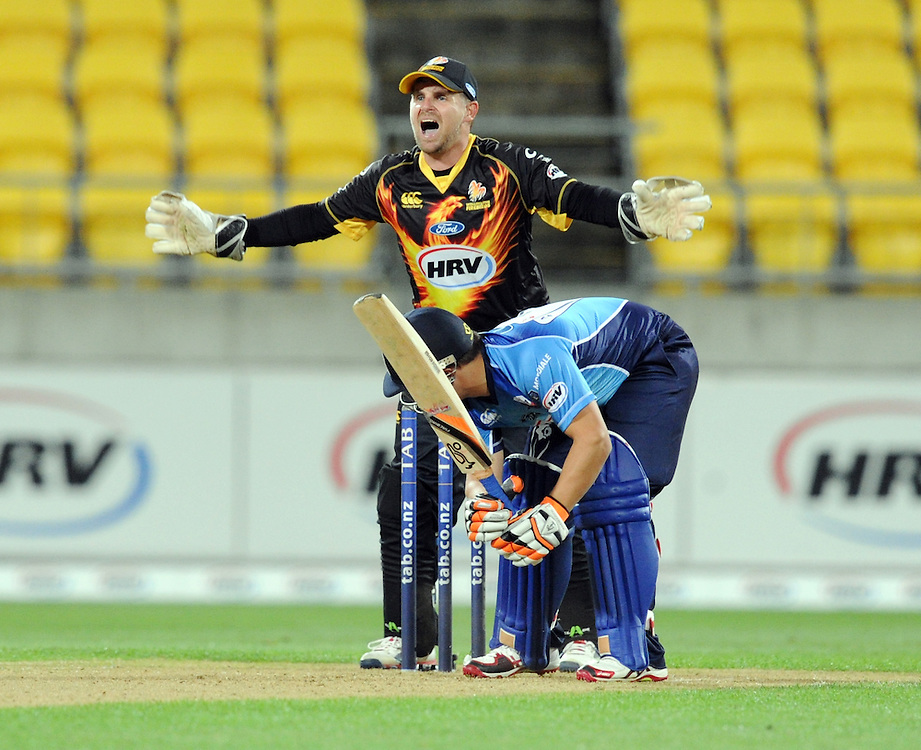 Wellington Firebirds Michael Papps makes an appeal for the wicket of Auckland Aces Craig Cochopa in the HRV T20 cricket match at Westpac Stadium, Wellington, New Zealand, Saturday, November 23, 2013. Credit:SNPA / Ross Setford
