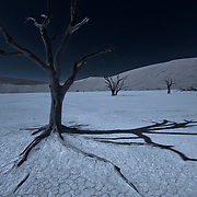 Maybe what Deadvlei would look like under a full moon. But no night Access so......