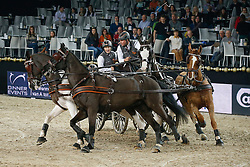 De Ronde Koos (NED) - Charley, Palero, Tommy, Mario<br /> FEI World Cup For In Hand Driving<br /> Vlaanderens Kerst Jumping Mechelen 2013<br /> © Hippo Foto - Dirk Caremans