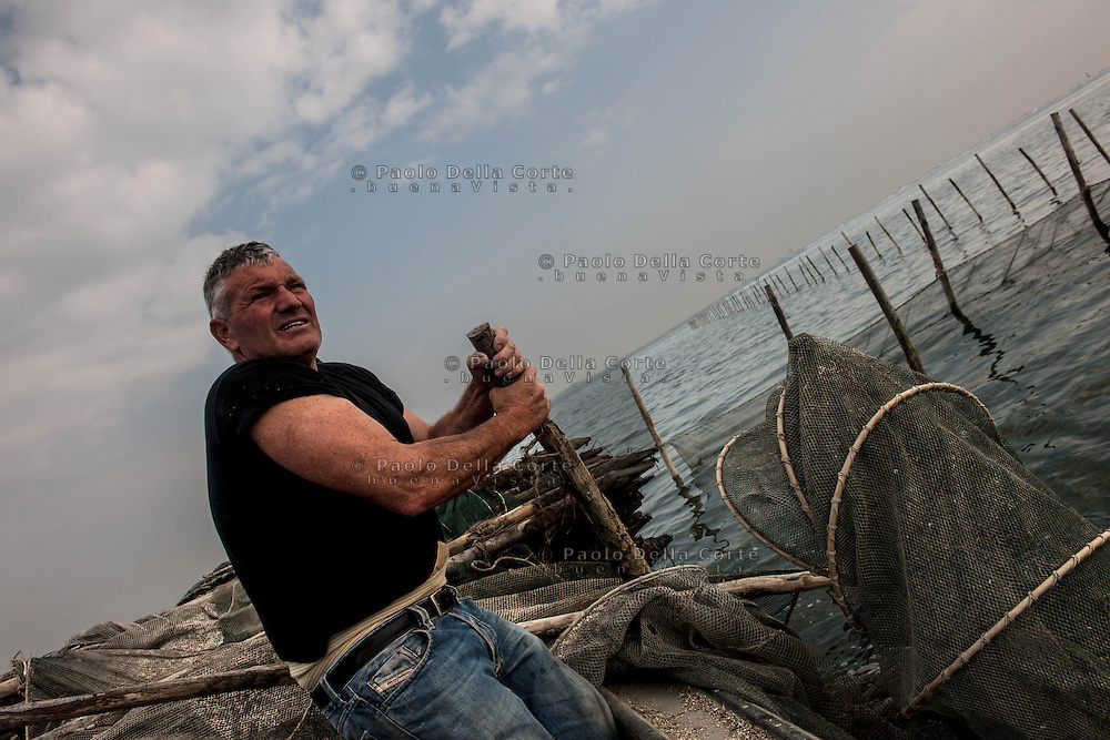 Venezia - Ivan Bognolo con il suo aiutante Gregorj durante la pesca delle moeche nella Laguna Sud di Venezia.