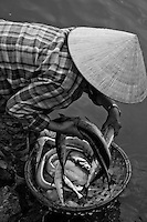 Woman wearing a conical hat washing fish in the river at the Hoi An fish market in black and white.