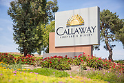 Callaway Vineyard and Winery Signage Temecula