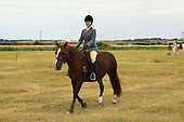 Class 27 - Ridden Veteran Horse & Pony