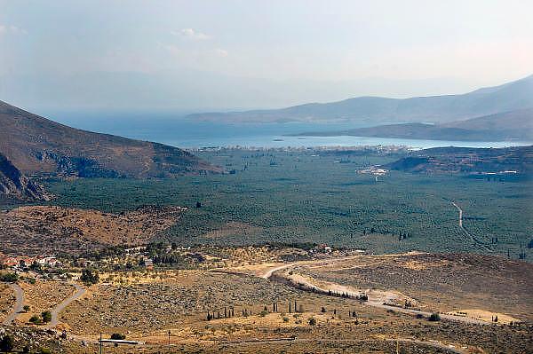 Griekenland, Athene, 5-7-2008Grieks landschap in de omgeving van Delphi.Greek landscape near Delphi.Foto: Flip Franssen