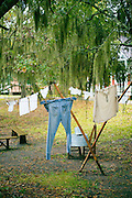 Laundry drying on washing line in Mississippi Delta, Louisiana, USA