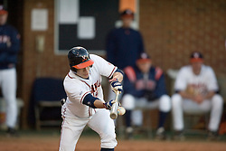 Virginia Cavaliers outfielder Mike Mitchell (5) executes a bunt against Bucknell.  The Virginia Cavaliers Baseball Team defeated the Bucknell University Bison 2-0 at Davenport Field in Charlottesville, VA on February 23, 2007.