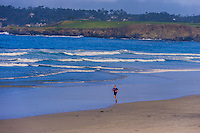 Beach scene, Carmel, Monterey County, California, USA