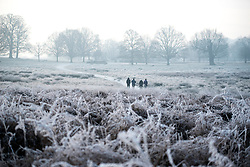 © Licensed to London News Pictures. 23/01/2015. Richmond, UK. People walk across frozen fields.  A cold frosty morning in Richmond Park, Surrey today 23rd January 2015. The UK is experiencing some very cold weather. Photo credit : Stephen Simpson/LNP
