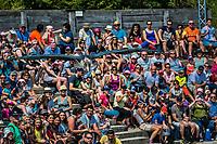 Marabout lors du spectacle d'oiseaux en vol. <br /> Considere comme l'un des plus importants parcs ornithologiques en Europe, le Parc des Oiseaux presente une collection d'oiseaux exceptionnelle de plus de 3000 individus, representant pres de 300 especes originaires de tous les continents.<br /> Exclusivites: Le spectacle d'oiseaux en vol, tous les jours, est un veritable festival de couleur