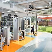 Ferguson Paper Baldwin Architects have created a super-clean spec lab and workout center for Healthcare Properties, Inc. in San Diego
