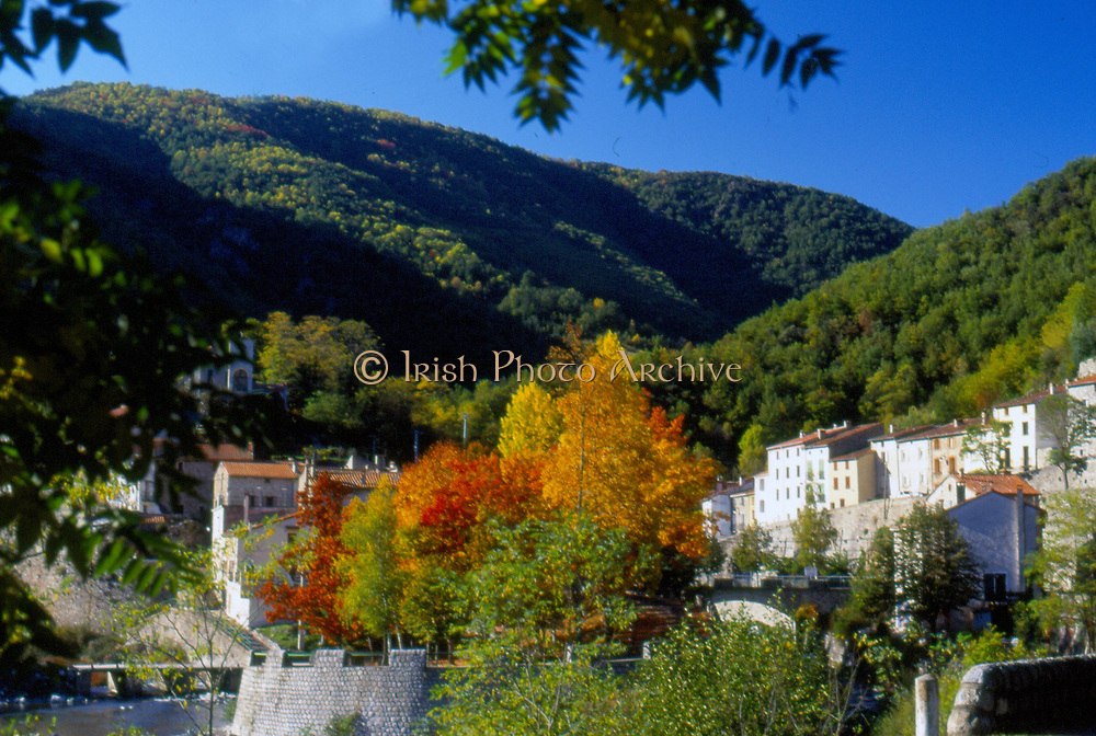 France, Languedoc and Roussillon.  Le Tech.  Autumn trees.
